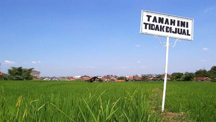 Tanah tidak dijual